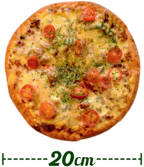 店名 なんとかピザ
