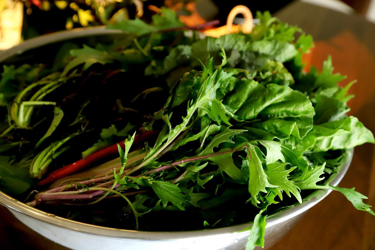 八ヶ岳の新鮮な無農薬野菜