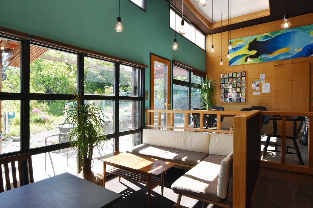Coucou CAFÉ(ククーカフェ)の店内