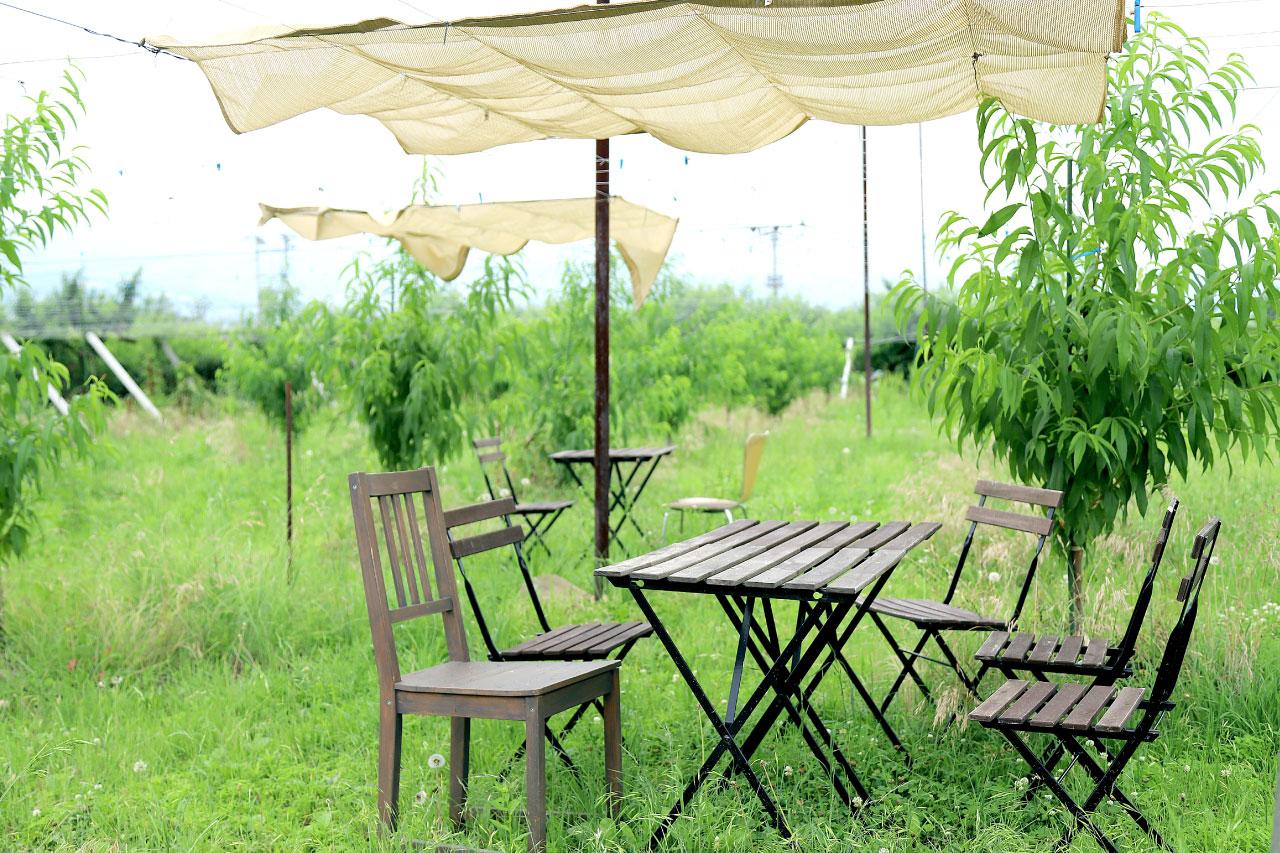 農カフェCouleur(クルール)の畑の中の席