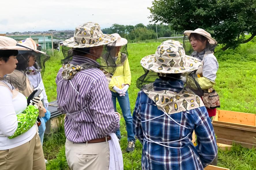730HONEYの養蜂&蜜しぼり体験