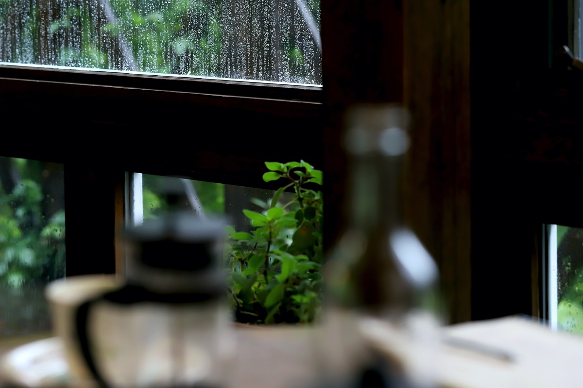 cafe cocochi 写真2