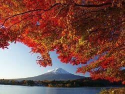 第22回 富⼠河⼝湖紅葉まつり