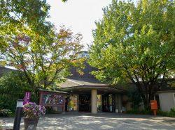 ぶどうの丘 展望ワインレストラン 甲州市 洋食