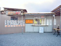 おかあさん弁当 韮崎市 テイクアウト