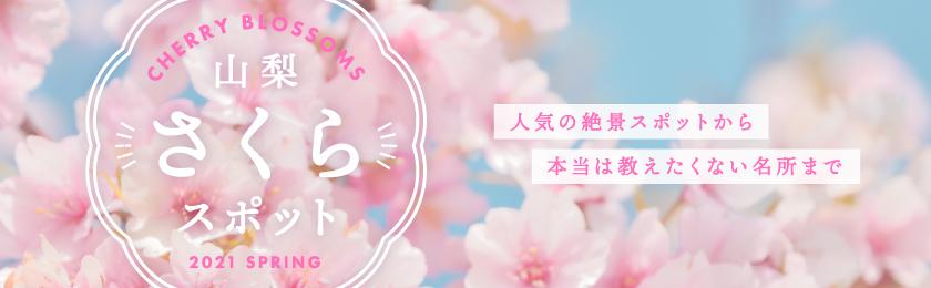 山梨の人気お花見スポット2021春~富士山との絶景や夜桜、お祭りまで
