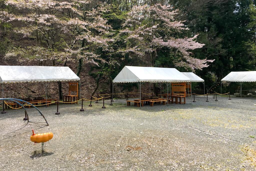 塩沢渓谷河川公園 バーベキュー3