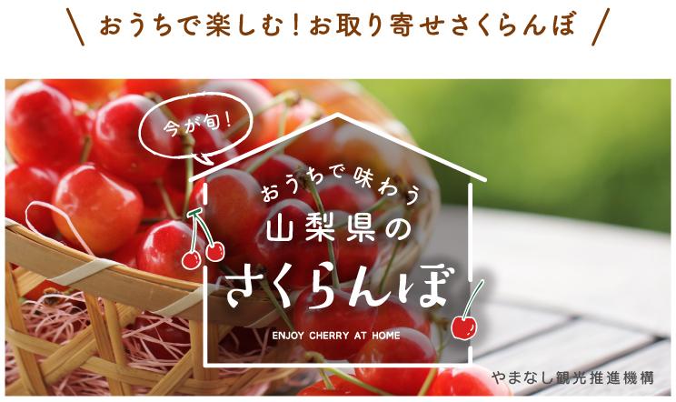 お家で味わう山梨のさくらんぼ
