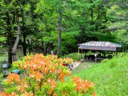 白鳳荘・さわら池キャンプ場