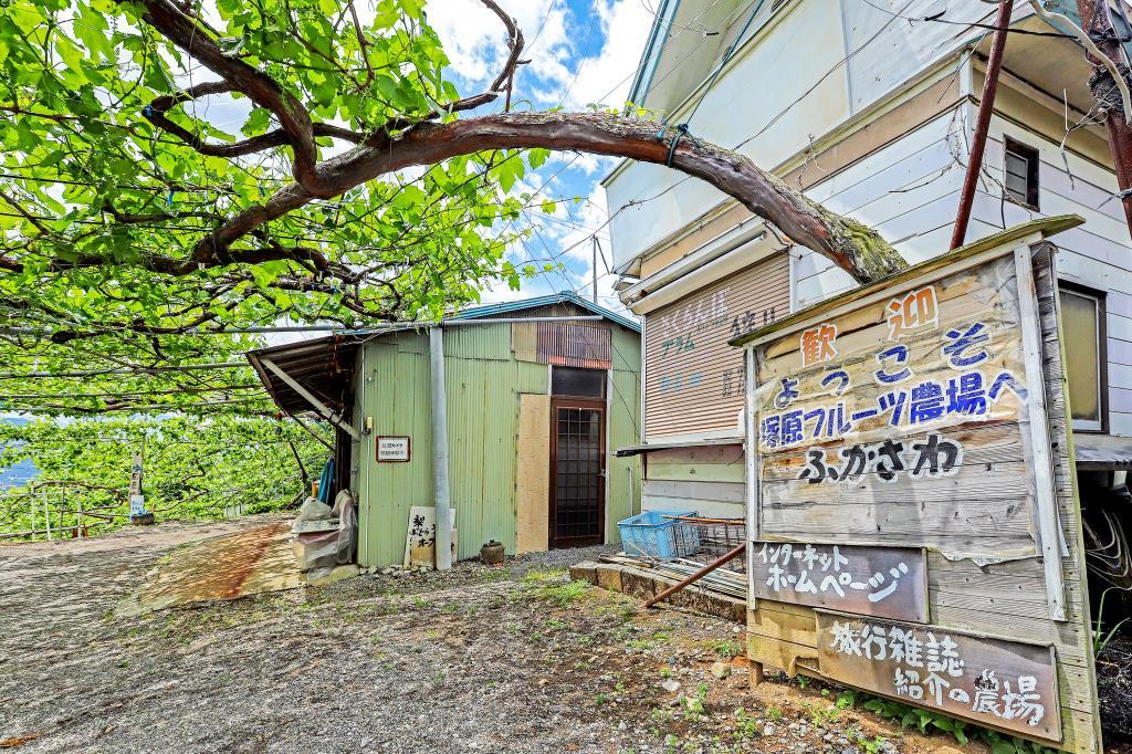 塚原山フルーツ農場ふかさわ5