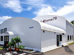 T-Dome79