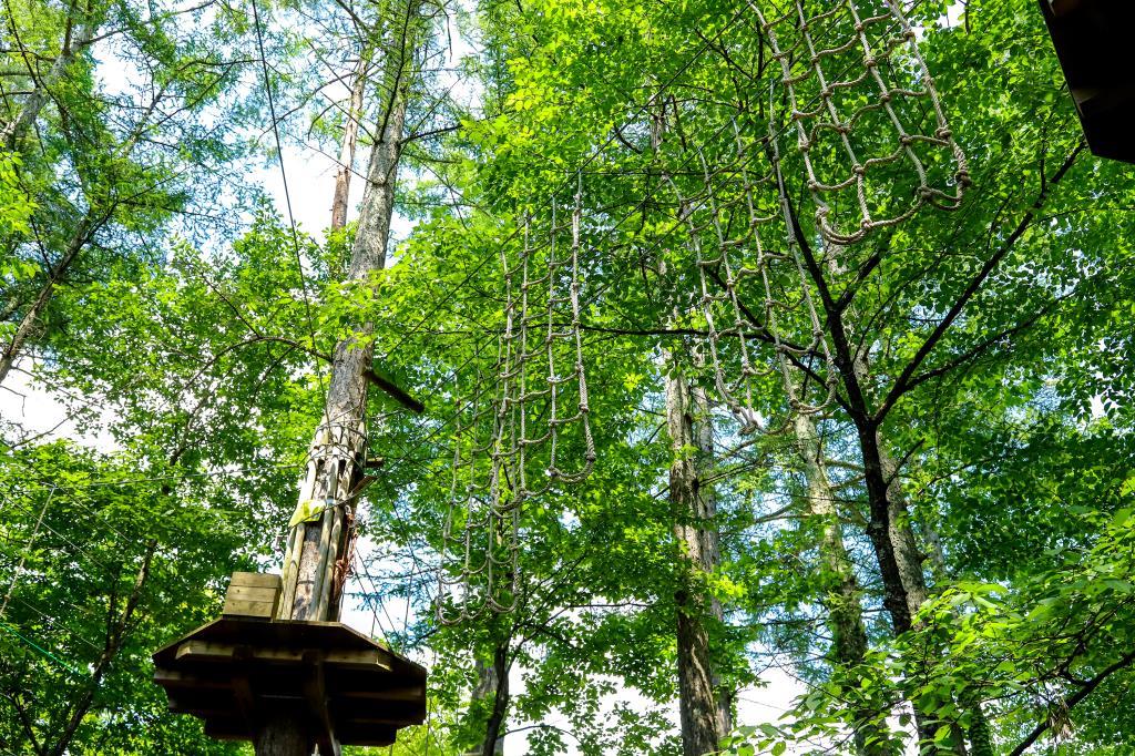 リゾナーレ八ヶ岳 森のクライミングウォール登場