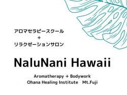 NaluNani Hawaii